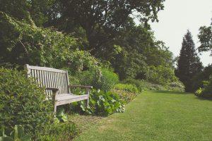 home-staging-jardin